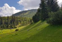 <p>Тришова пољана и поглед на највећи врх Дерњечиште</p>