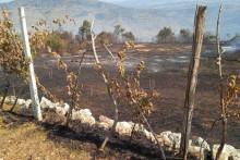 <p>Последице пожара у Пиперима</p>