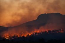 <p>У Калифорнији проглашена природна катастрофа</p>