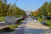 <p>Универзитет Црне Горе</p>