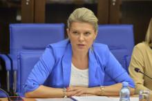 <p>Administrativni odbor, sjednica administrativnog odbora, Draginja Vuksanovic Stankovic</p>