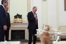 <p>Путин и пас</p>