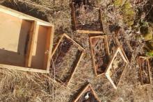 <p>Уништен пчелињак</p>