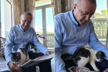 <p>Erdogan i mačka</p>
